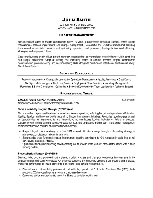 Program manager job description resume
